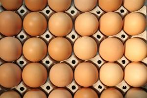 eggs-dreamstimefree_689630