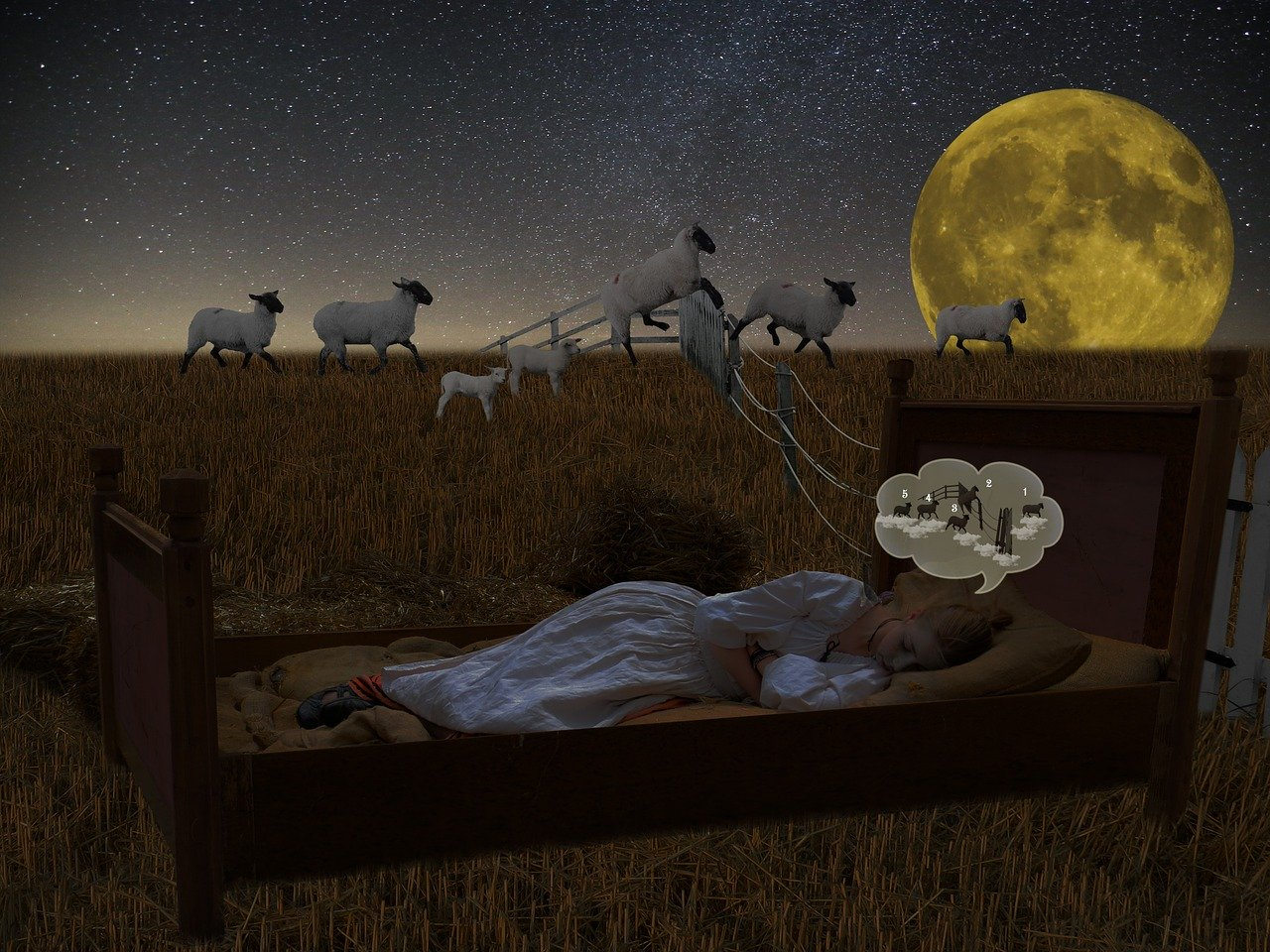 Insomnia Technique Bettter Than Counting Sheep